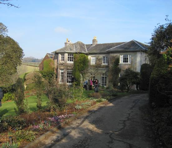 Situated On The Edge Of Dartmoor, The Garden House Lies Between The  Villages Of Crapstone And Buckland Monochorum And Is Now Open Every Weekend  In February ...